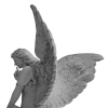 Angel 2909617 200